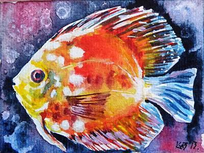 Tropical Fish Painting - Discus Fish by Kovacs Anna Brigitta