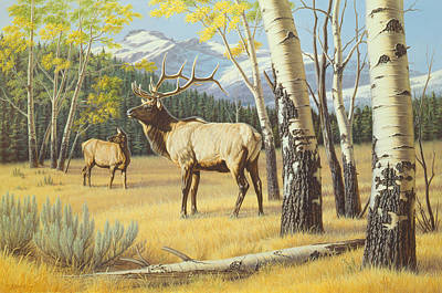 Elk Painting - Distant Bugle by Paul Krapf