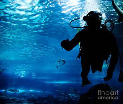 Diver Photograph - Diving In The Ocean Underwater by Michal Bednarek
