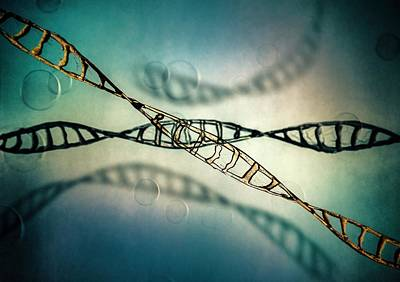 Helical Photograph - Dna Molecules by Richard Kail