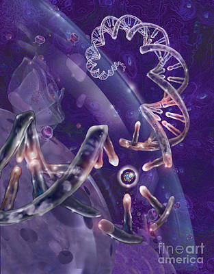 Dna With Protein Print by Jim Dowdalls