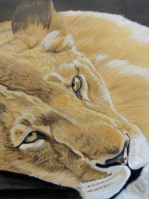 African Big Cats Drawing - Do Not Disturb  by Lea Sutton