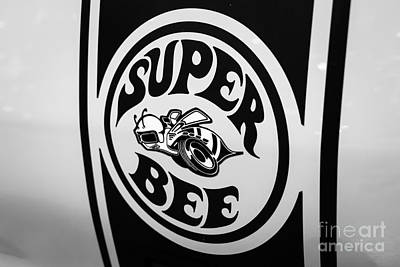 Dodge Super Bee Decal Black And White Picture Print by Paul Velgos