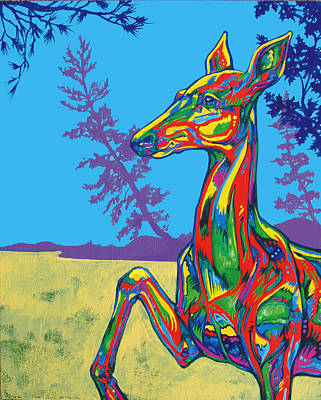 Doe Print by Derrick Higgins