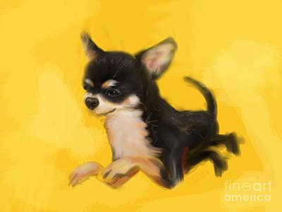Animal Art Painting - Dog Chihuahua Yellow Splash by Go Van Kampen