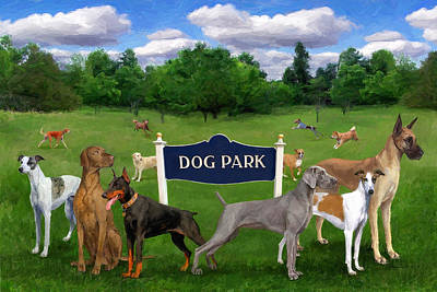 Dog Park Print by Frank Harris