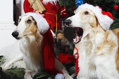 dogs Borzoi puppies and Christmas greetings Print by Christian Lagereek
