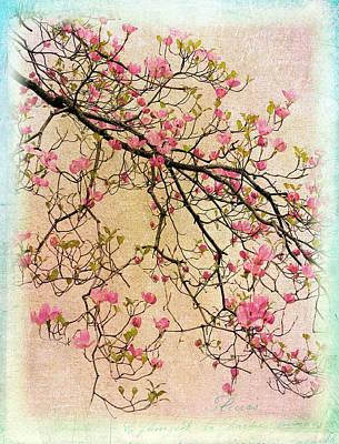 Soft Digital Art - Dogwood Canvas 3 by Jessica Jenney