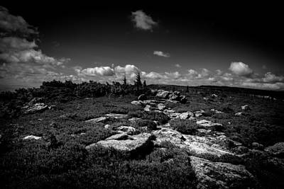 Virginia Photograph - Dolly Sods West Virginia  by Shane Holsclaw