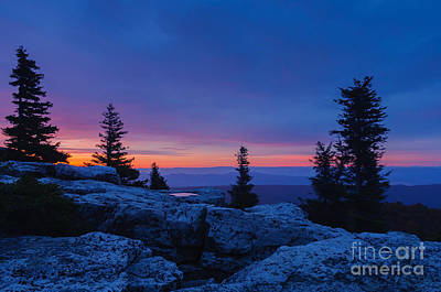 Dolly Sods Wilderness D30007712 Print by Kevin Funk