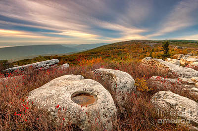 Dolly Sods Wilderness D30019870 Print by Kevin Funk