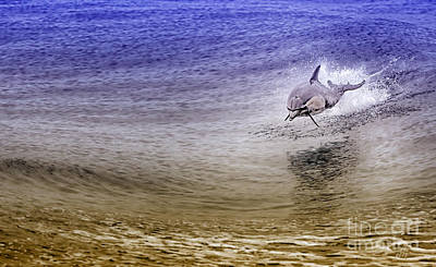 Ocean Photograph - Dolphin Jumping by David Millenheft