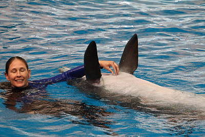 Dolphin Show - National Aquarium In Baltimore Md - 1212233 Print by DC Photographer