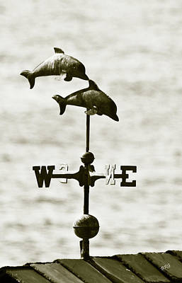 Weathervane Photograph - Dolphins Weathervane In Sepia by Ben and Raisa Gertsberg
