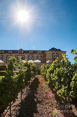 Domaine Carneros Sun - Winery And Vineyard With Sun Flare In Napa Valley California Print by Jamie Pham