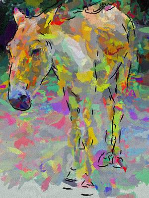 Donkey's Dreams Print by Yury Malkov