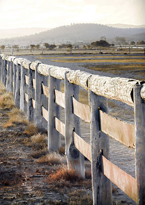 Photograph - Don't Fence Me In by Holly Kempe