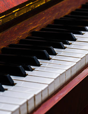 Don't Shoot The Pianist Vertical 3 Print by Alexander Senin