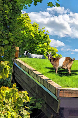 Goat Painting - Door County Al Johnsons Swedish Restaurant Goats by Christopher Arndt