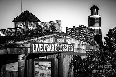 Dory Fishing Fleet Live Crab And Lobster Sign Picture Print by Paul Velgos