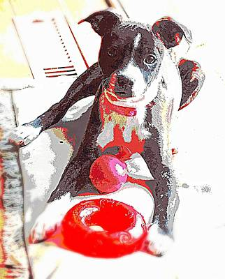 Brat Digital Art - Dos Alegrias Rojo by Tg Devore