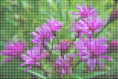 Dots Photograph - Dot Puple Flowers by Pittsburgh Photo Company