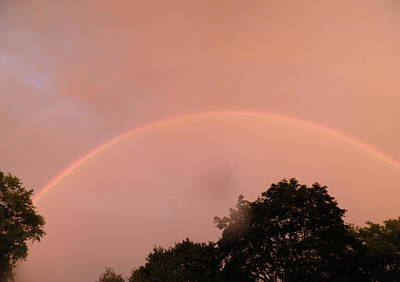 Pink Black Tree Rainbow Photograph - Double Rainbow by Kate Gallagher