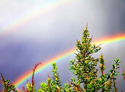 Double Rainbow Sky Print by Destiny  Storm