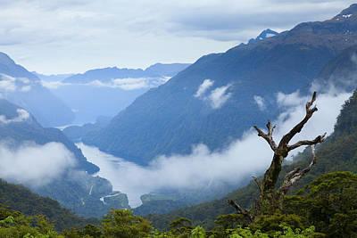 New Zealand Photograph - Doubtful Sound by Alexey Stiop