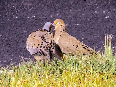 Doves Kisses Print by Zina Stromberg