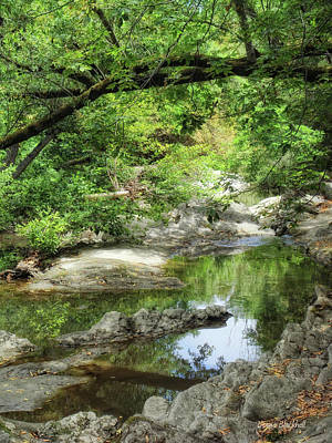 Down By The Creek Print by Donna Blackhall