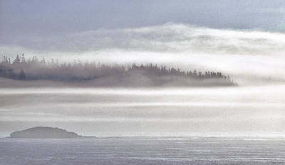 Quoddy Photograph - Down East Coastal Fog by Marty Saccone