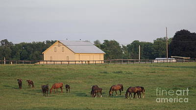 Down Home On The Farm Print by Rob Luzier