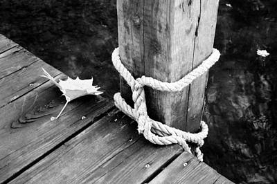 Joeseph Photograph - Down On The Dock by Amy Lingle