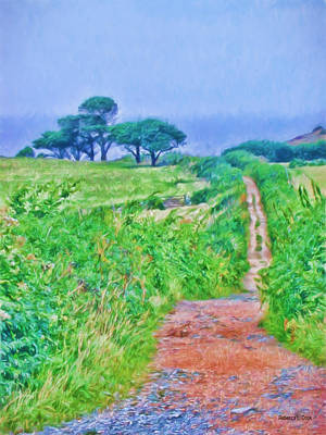 Country Dirt Roads Digital Art - Down To The Sea Herm Island by Bellesouth Studio