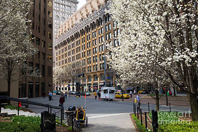 Pennsylvania Photograph - Downtown Pittsburgh In The Spring by Amy Cicconi