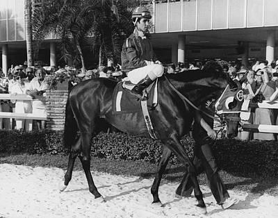 Dr. Valeri Horse Racing Vintage Print by Retro Images Archive