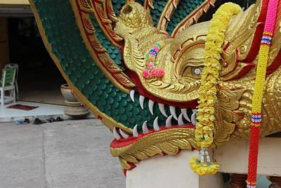 Dragon Photograph - Dragon Head by Michael Kim