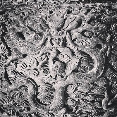 Dragon Photograph - Dragon #shanghai #dragon by C C
