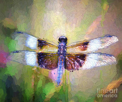 Dragonfly Photograph - Dragon Wings by Kerri Farley