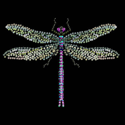 Dragonfly Bedazzled Print by R  Allen Swezey