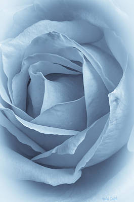 Dreamy Blue Print by Heidi Smith