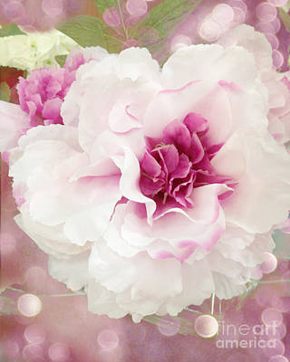Dreamy Cottage Shabby Chic Pink And White Soft Ethereal Fluffy Rose Floral Art Impressionistic  Print by Kathy Fornal