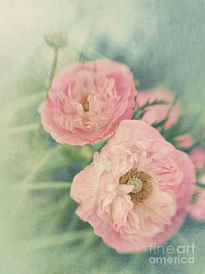 Vertical Format Photograph - Pastel  by Priska Wettstein