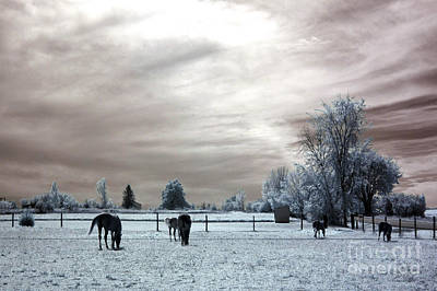 Dreamy Surreal Infrared Horse Landscape Print by Kathy Fornal