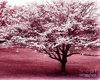 Dark Pink Photograph - Dreamy Surreal Pink South Carolina Trees  by Kathy Fornal