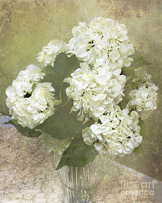 Dreamy Vintage Cottage Chic White Hydrangeas - Shabby Chic Dreamy White Floral Art  Print by Kathy Fornal