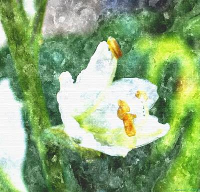 Drenched In White Flowers V  Macro Print by Rosemarie E Seppala