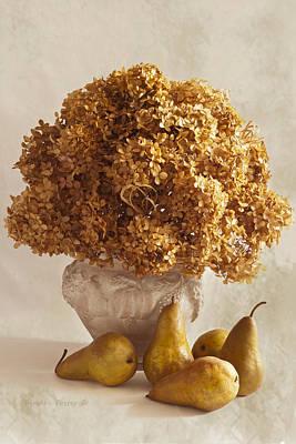 Still Life Photograph - Dried Hydrangeas And Pears Still Life by Sandra Foster