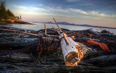 Desert Island Digital Art - Drifting  by Kenny  Noddin